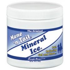 MANE 'N TAIL MINERAL ICE, 500 GM
