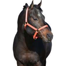 "HAMILTON 1"" REFLECTIVE HALTER - NO SNAP AT THROAT"