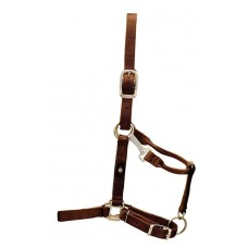 "HAMILTON 1"" EARTH TONE HALTER WITH ADJUSTABLE CHIN AND SNAP AT THROAT"