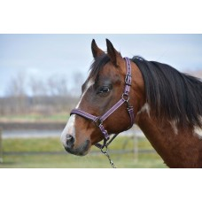 COUNTRY LEGEND DESIGNER PADDED HALTER