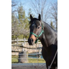 HAMILTON 1 INCH DELUXE HALTER NO SNAP AT THROAT