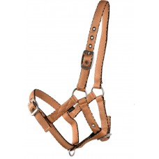 CUSHION WEB HALTER - FOAL