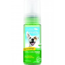 TROPICLEAN FRESH MINT FOAM - 4.5 OZ